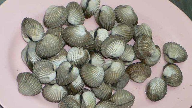 ホーイ・クレーン・ルワック หอยแครงลวก hoi kraeng luak [茹で赤貝]