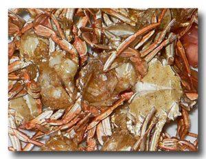プーニム・トーッ・クロップ ソフトシェルクラブのカリカリ揚げ 蟹にズーム