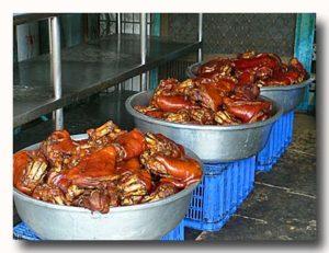 近くの製造工場で煮上がったばかりの豚足
