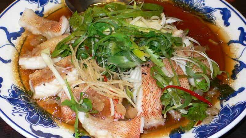 清蒸石斑魚 qīngzhēng shíbānyú [ハタの中華風蒸し物]