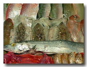 海鮮料理屋のショーケース