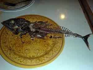 イカンバカール カツオ一本焼き を食べ終わったお魚の骨