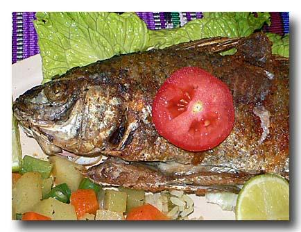 ペスカド・フリート 魚のフライ アップ