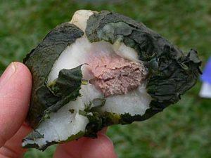 アバイ 肉入り餅