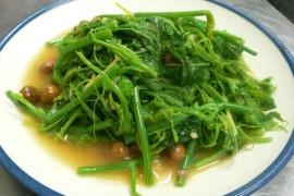 豆苗の炒め物 台湾