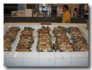 店頭にずらりと並べられた渡り蟹