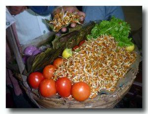 ダール・ケ・アンクール 豆もやしのサラダ 発芽豆のサラダ売りのカバン