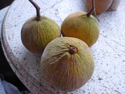 カートン(タイの果物)